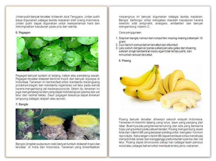 03 - Bonita Generali - Pegagan - Bangle - Pisang